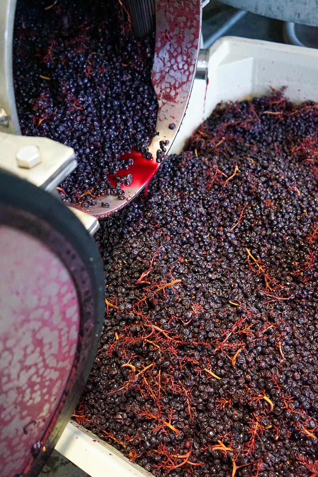 Underwood Nouveau Pinot Noir