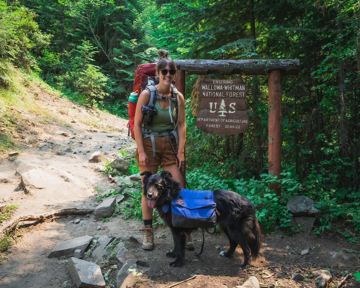 Wallow Whitman National Forest Backpacking
