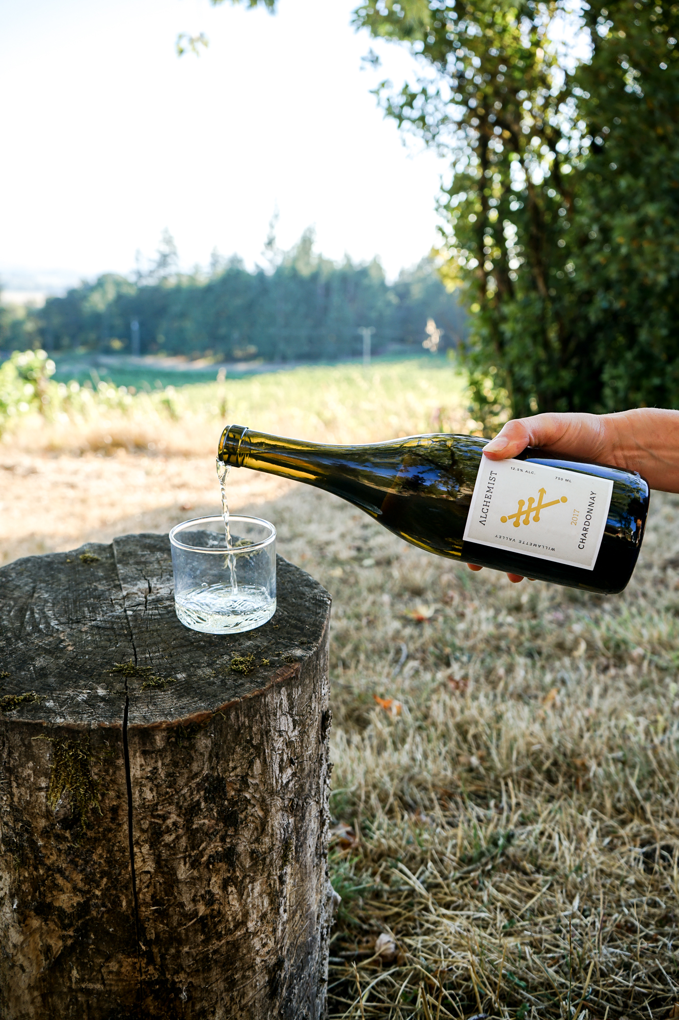 The Union Wine Co Glass by North Drinkware